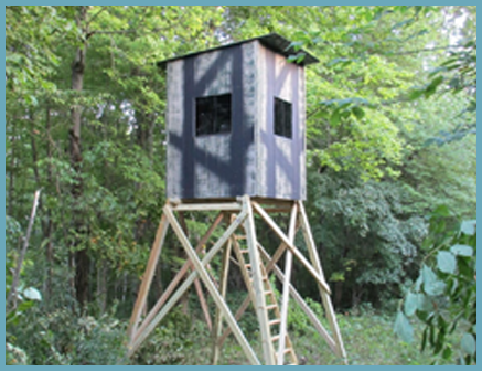 Hunting Blinds • Your #1 Backyard Storage Solution